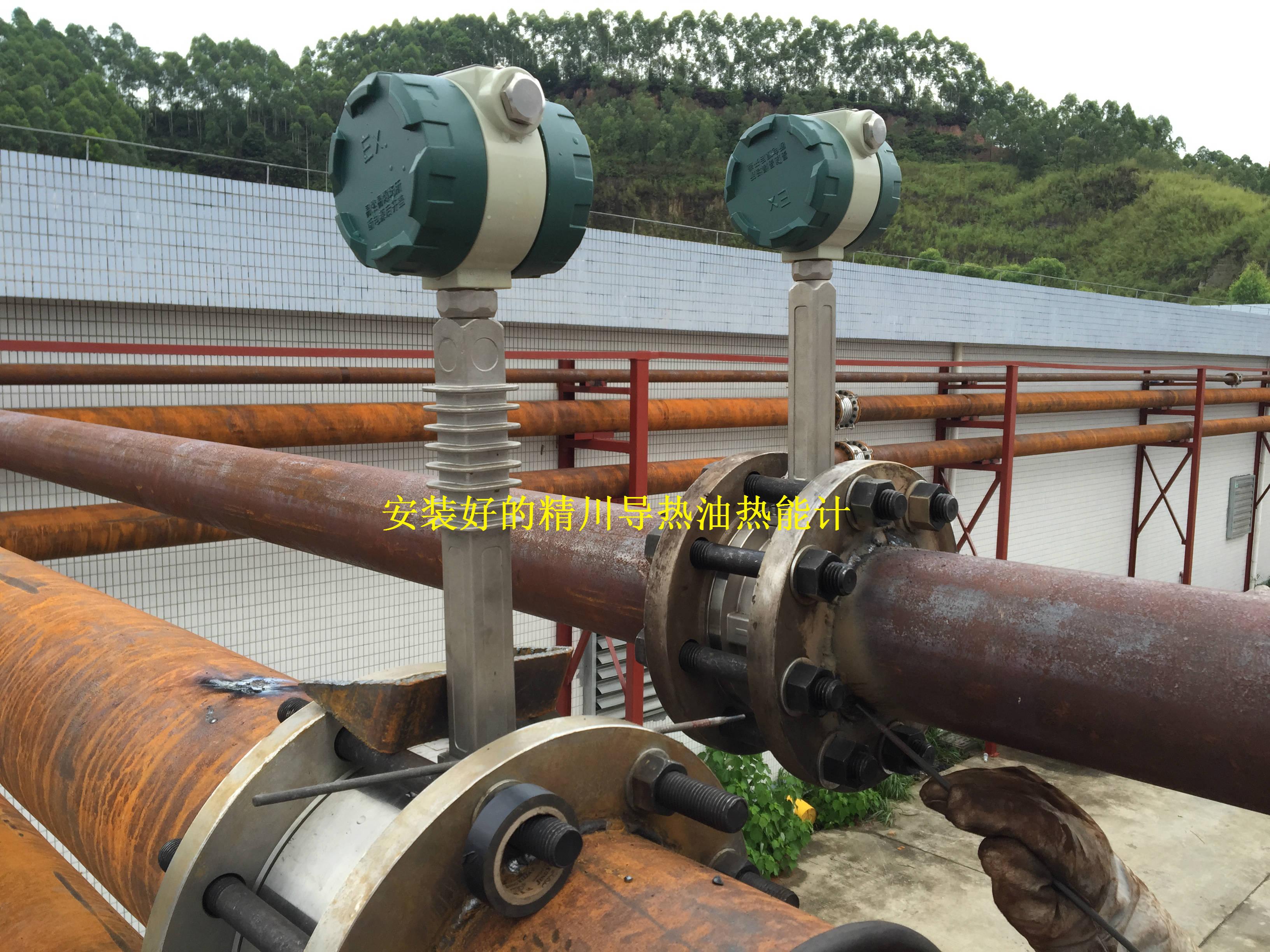 导热油流量计安装