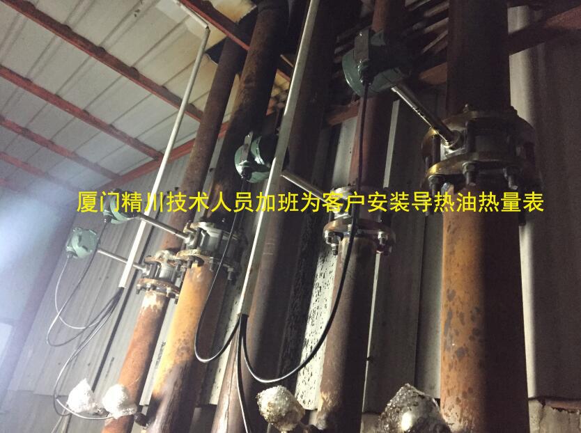 印染厂导热油流量计