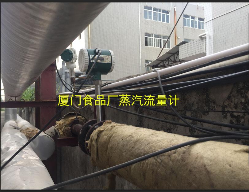 食品厂蒸汽流量计
